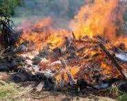 burning of waste