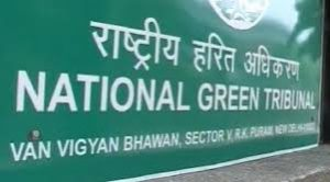 NGT junks plea against petha-making units in Agra