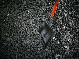 Coalscam: Court asks CBI to verify death of accused