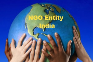 What are the Popular Non Government Organisation (NGO) Entities in India?